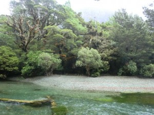 Nový zéland cestování