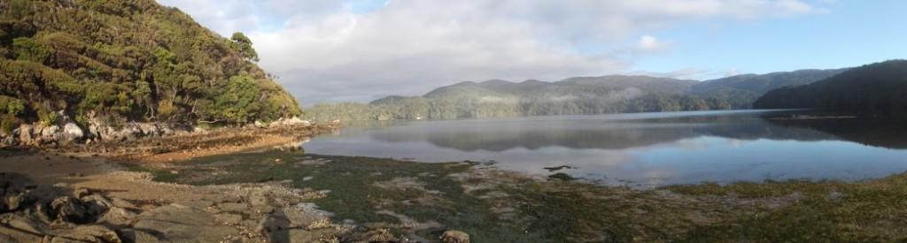 Rakiura Track na Stewart Island - krásné ráno
