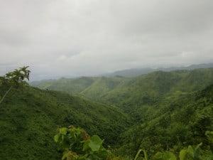 Čajové plantáže Kalaw