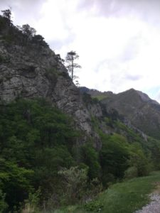 Vjezd Sutjesky
