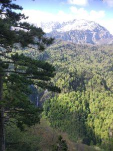 Výhled na prales a vodopád